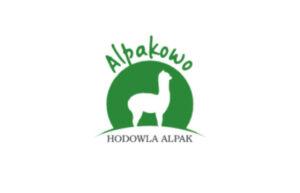 Alpakowo – hodowla alpak
